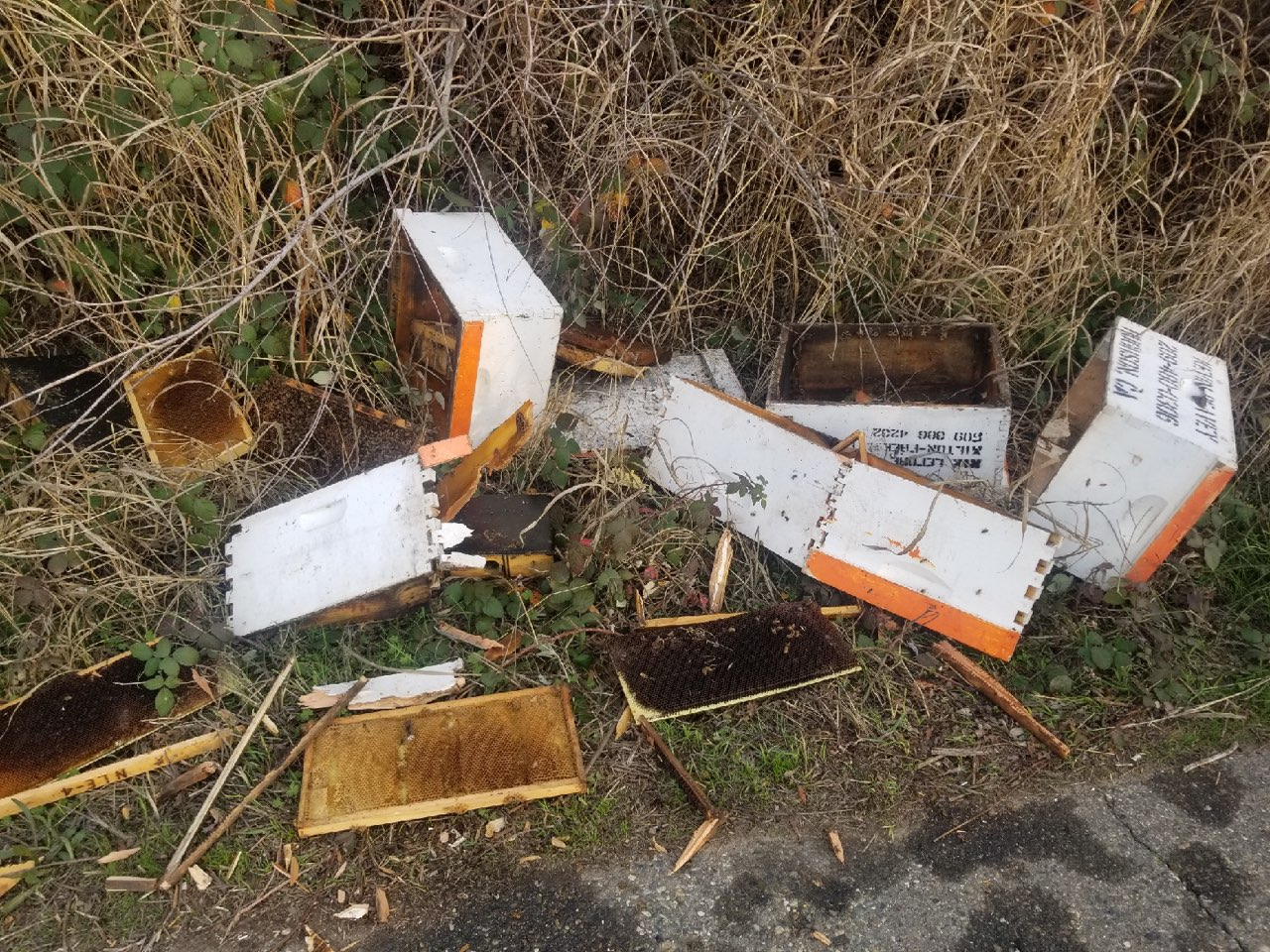 Hive theft in Merced County