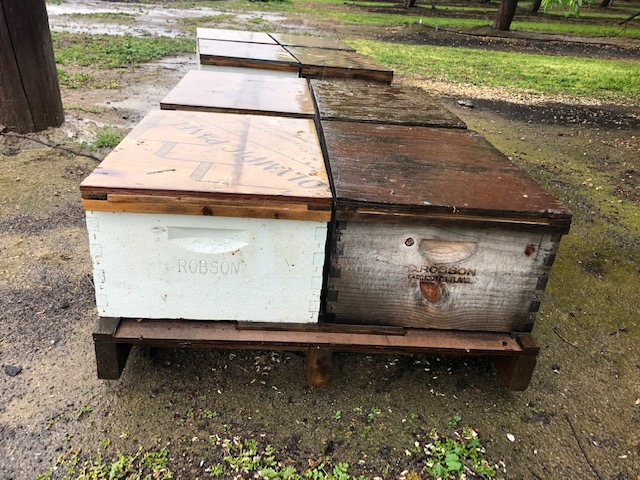 Hive Theft in Madera County